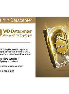 HDD 1TB SATAIII WD Gold 7200rpm 128MB for servers (5 years warranty)